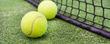 tennis balls by net